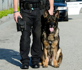 police-dog-thinkstockphotos-177686239