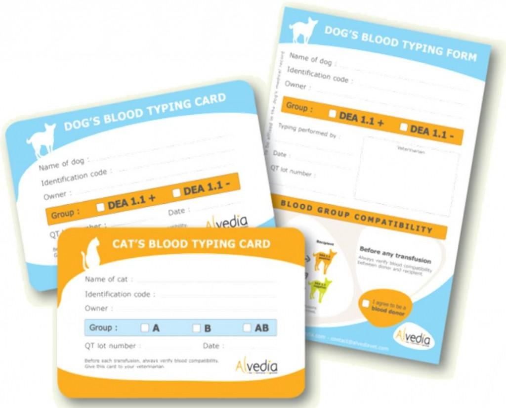 寵物血型卡的樣子