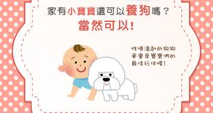 嗷嗚~我是最佳狗保母!適合有孩童家庭養的10種狗狗