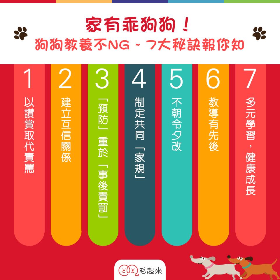 訓練狗狗的7大原則