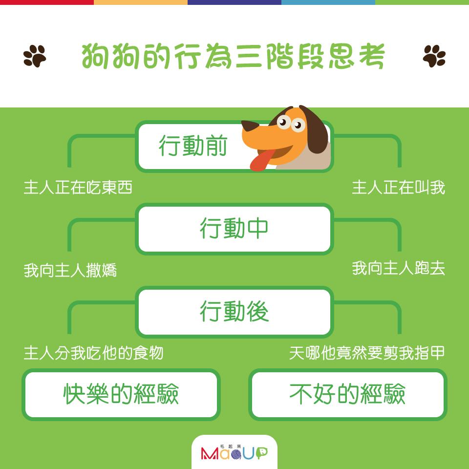 【家有乖狗狗】狗狗行為的3階段思考