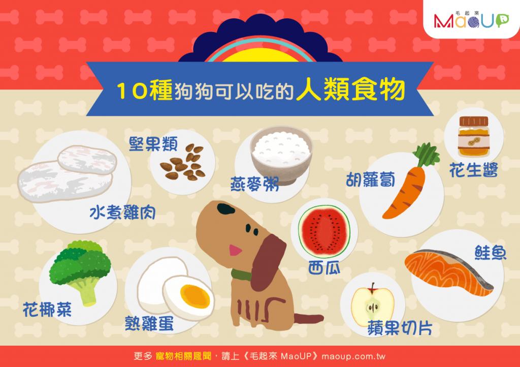 【分食不再心驚驚!】10種狗狗可以吃的人類食物