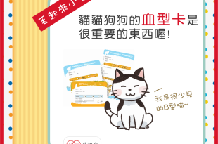 【毛起來愛注意】狗狗貓貓血型卡的重要性