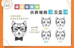 【貓眼變變變】小時候的藍不是藍