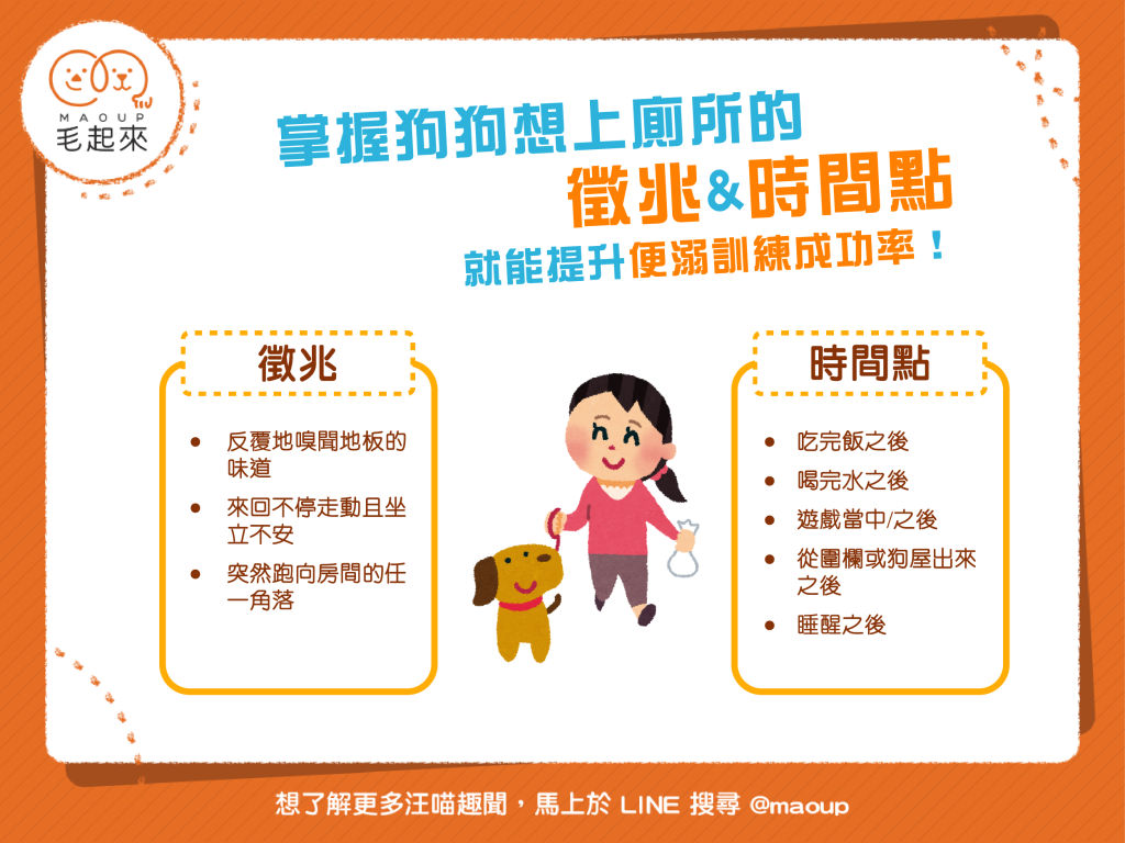 【狗狗訓練術】如何訓練狗狗上廁所?掌握這些徵兆&時間點就能成功!