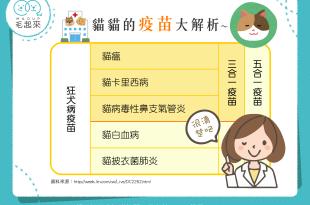 【貓貓疫苗大解析】喵星人健康最前線!