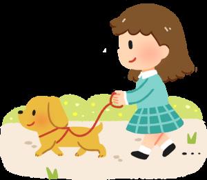 訓練狗狗可以透過多元學習