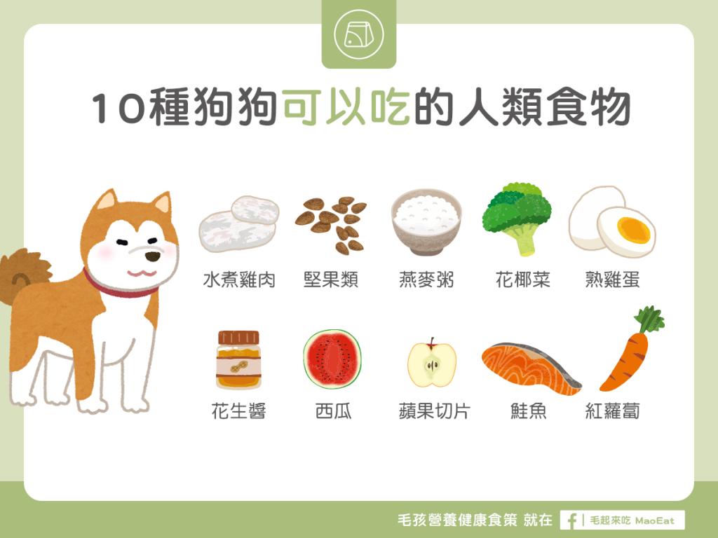 【營養食材圖鑑】10 種狗狗可以吃的人類食物