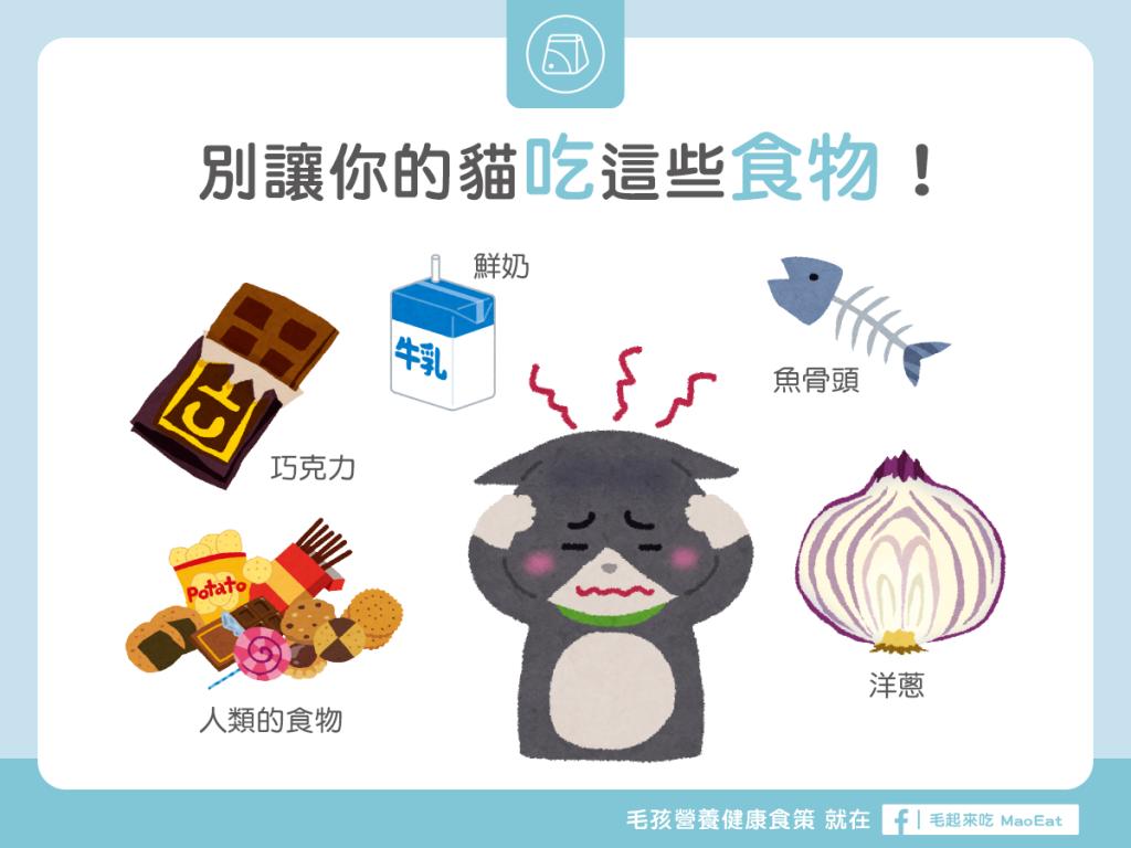 【營養食材圖鑑】別讓你的貓吃這些食物!