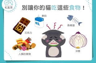 【毛孩食材圖鑑】別讓你的貓吃這些食物!