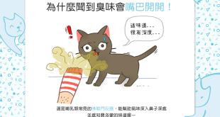【喵喵行為學】矮額~臭迷摸!貓貓聞到臭味時為什麼會嘴開開?