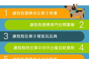 【家有乖狗狗】搭車好可怕?5大方法讓狗狗快樂兜風去!