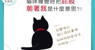 【那些關於屁屁的事】為什麼我家的貓貓一直用屁股對著我呢?