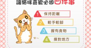 【做個貓見貓愛的人】想讓貓咪喜歡你?別忘了這4個原則!