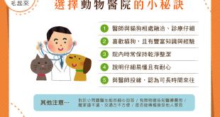 【選院小指南】動物醫院怎麼選?5大秘訣來解惑!