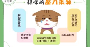 【貓咪的壓力源】別懷疑!做為一隻貓,也是有各種壓力der!