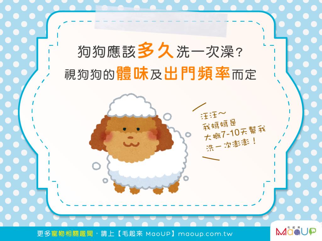 【汪汪洗香澎】狗狗應該多久洗一次澡?視體味和出門頻率而定!