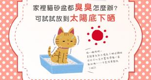 【戰勝臭臭盆】貓砂盆臭臭怎麼辦?曬曬太陽吧!