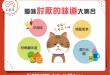 【臭臭惹貓厭】塊陶啊喵~4類讓貓咪避之唯恐不及的氣味!