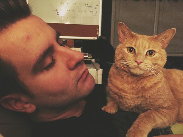 人貓好朋友