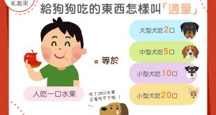 【汪喵餵養知識】給狗狗吃人類食物的時候,怎樣叫「適量」呢?