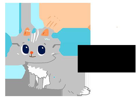 用濕濕的手把貓貓的耳朵和身體毛髮沾濕