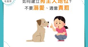 【家有乖狗狗】你是狗奴嗎?請不要溺愛狗狗,並適當責罰吧!