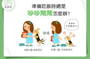 【家有乖狗狗】會吵的狗狗有飯吃?別讓狗狗養成壞習慣!