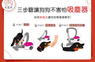 【汪汪小學堂】狗狗很害怕吸塵器聲怎麼辦?快試試漸進法吧!