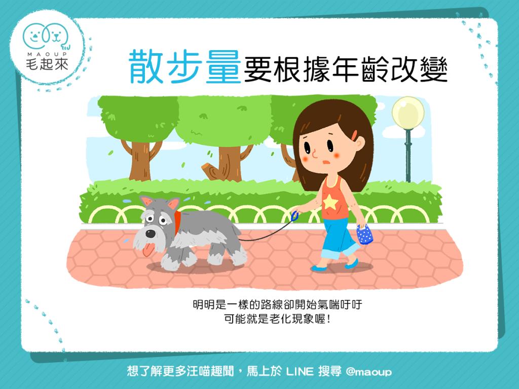 【與汪汪的幸福時光】狗狗老了嗎?散步量要根據年齡改變喔
