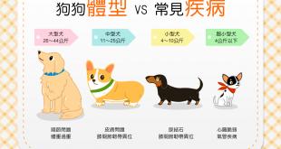 【一定要注意!】狗狗體型vs.常見疾病