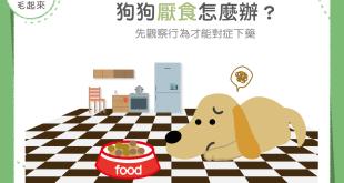 狗狗不吃飯