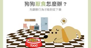【汪喵餵養知識】狗狗厭食怎麼辦?先觀察行為才能對症下藥!