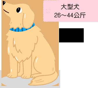 大型犬 26~44公斤 拉不拉多 or 黃金獵犬 關節問題 體重過重