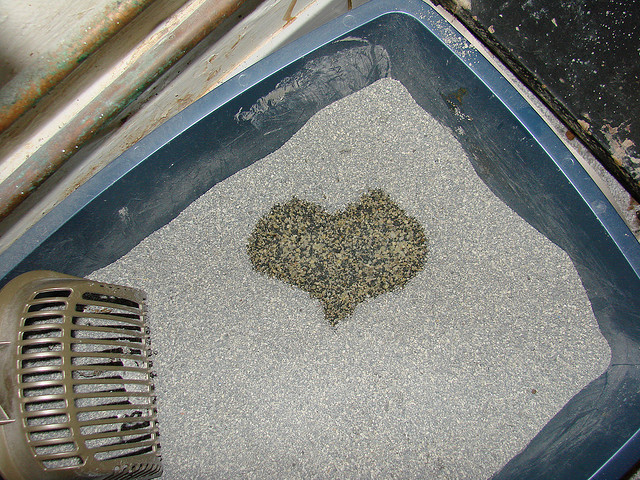 Litter box heart