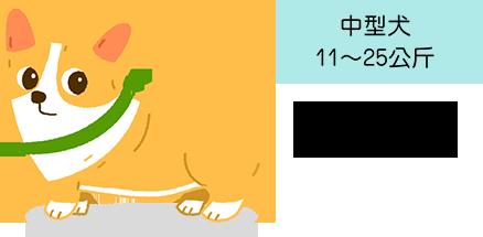 中型犬 11~25公斤 柯基 皮膚問題 膝關節韌帶異位