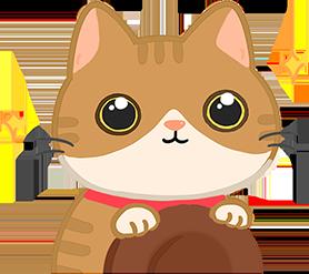 貓貓眼睛水汪汪代表對眼前東西感興趣