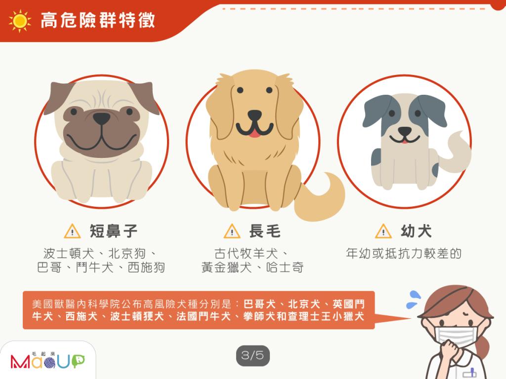 容易得熱衰竭的狗品種