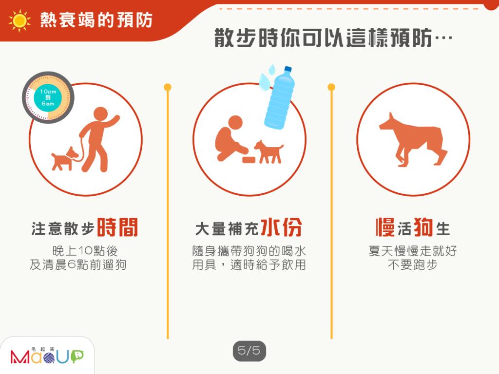 預防狗狗熱衰竭