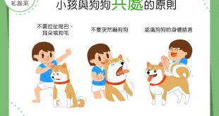 【做個好朋友!】小孩與狗狗和平共處的3點原則