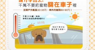 【夏日兜風要注意】千萬不要把狗狗關在車子裡!