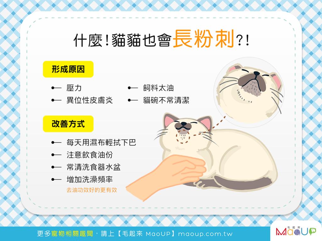 【喵喵康健】貓貓下巴「哦密馬」?!當心粉刺來找碴!