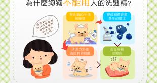 【汪汪康健】皮膚越洗越糟糕?!狗狗不能用人的洗髮精啦!