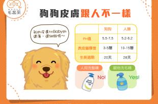 【汪汪知識加】人狗有別!狗狗的皮膚跟人類的可是不同的哦!
