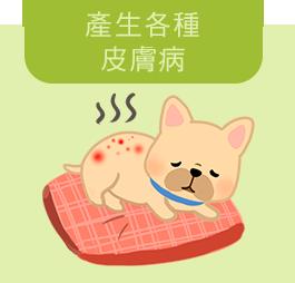 狗狗出現各種皮膚病