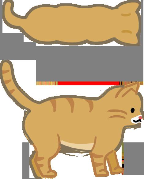 貓貓體型標準
