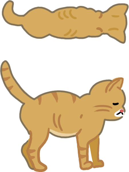 貓貓體型過瘦