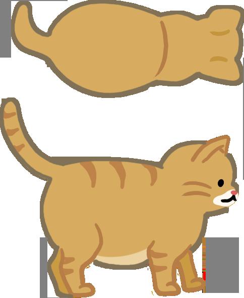 如何知道如何檢查貓咪過胖貓咪太胖貓貓過瘦過胖體型體態體重超標太肥