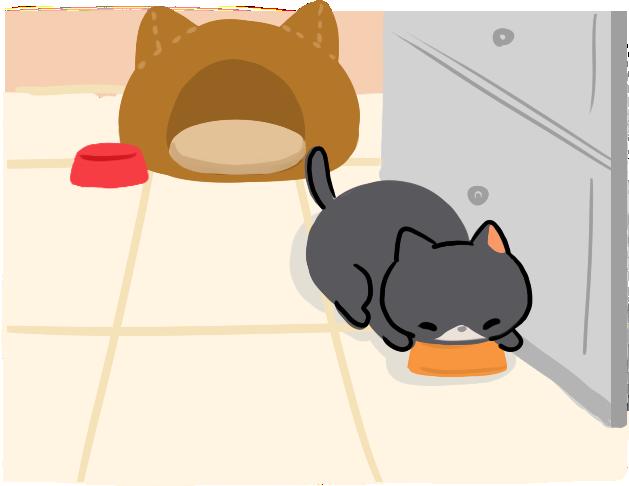 貓咪餵養知識貓貓不愛喝水貓咪不喝水怎麼辦4招讓貓貓愛上喝水處處有水流動水常換水食物加水