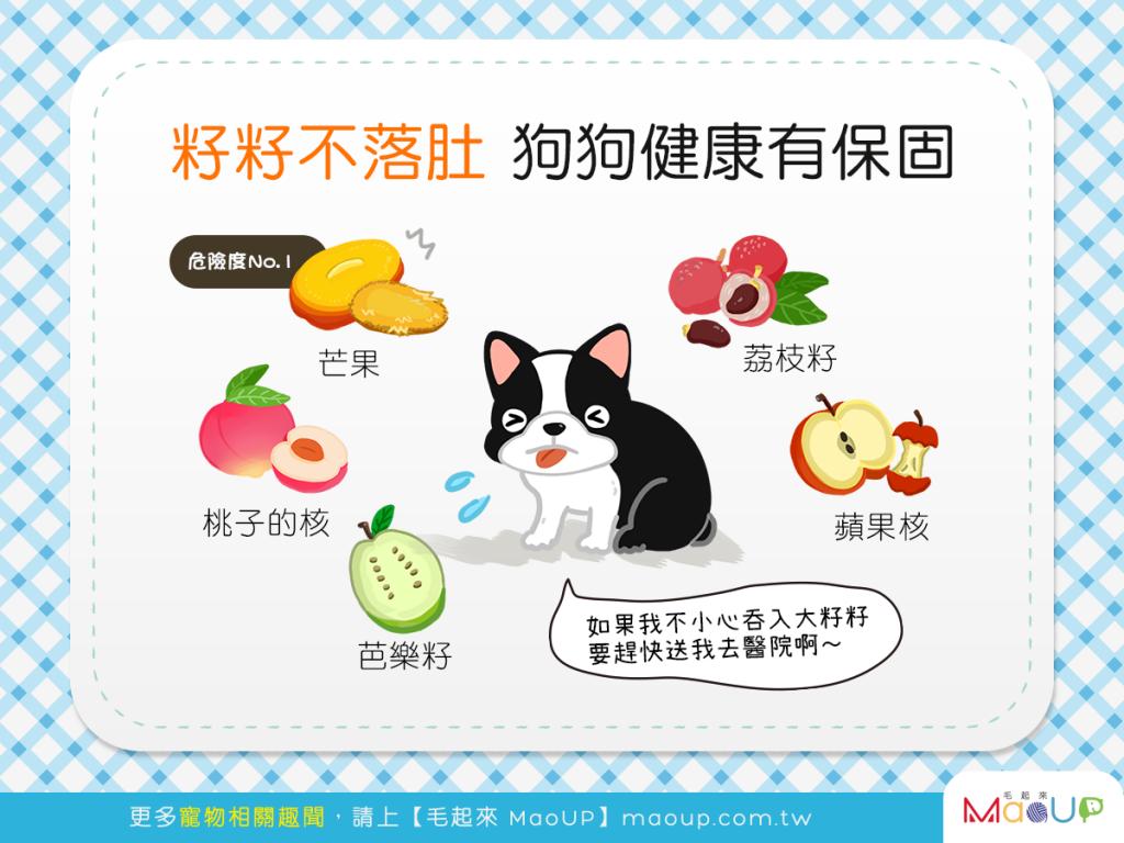 【5種恐怖的「核籽」危機】籽籽不落肚,狗狗健康有保固!